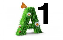 Telekom A1 Logo