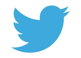Twitter New Bird