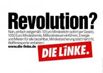 Die Linke Wahlplakat 2013