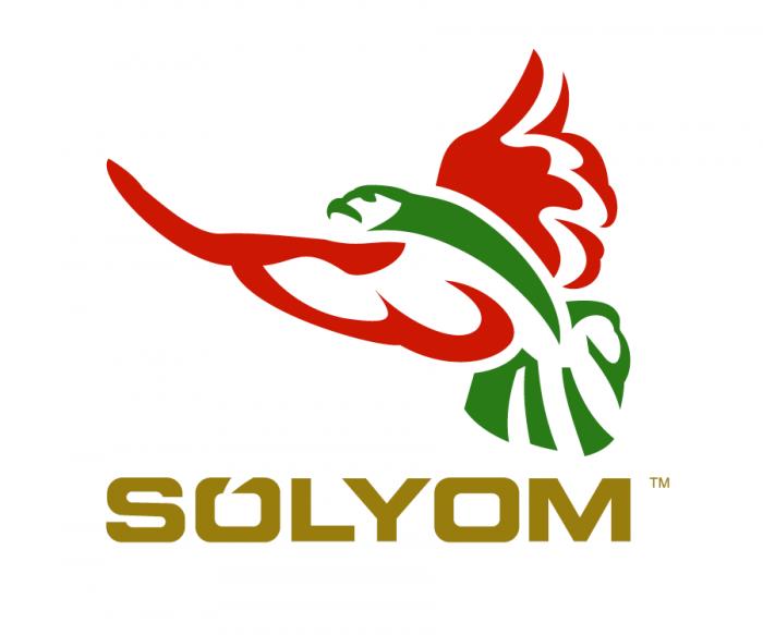 Sólyom Hungarian Airways – eine neue Airline nimmt Gestalt an