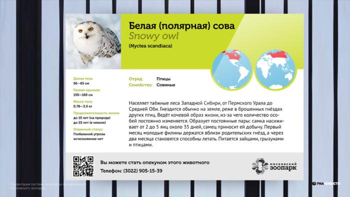Zoo Moskau - Hinweistafel