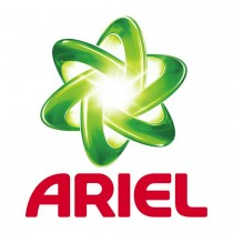 Ariel Logo (2013)
