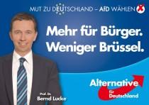 Europawahl 2014 – AfD Bernd Lucke