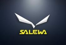 Salewa 3D Logo