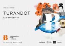Bregenzer Festspiele 2015 Flyer