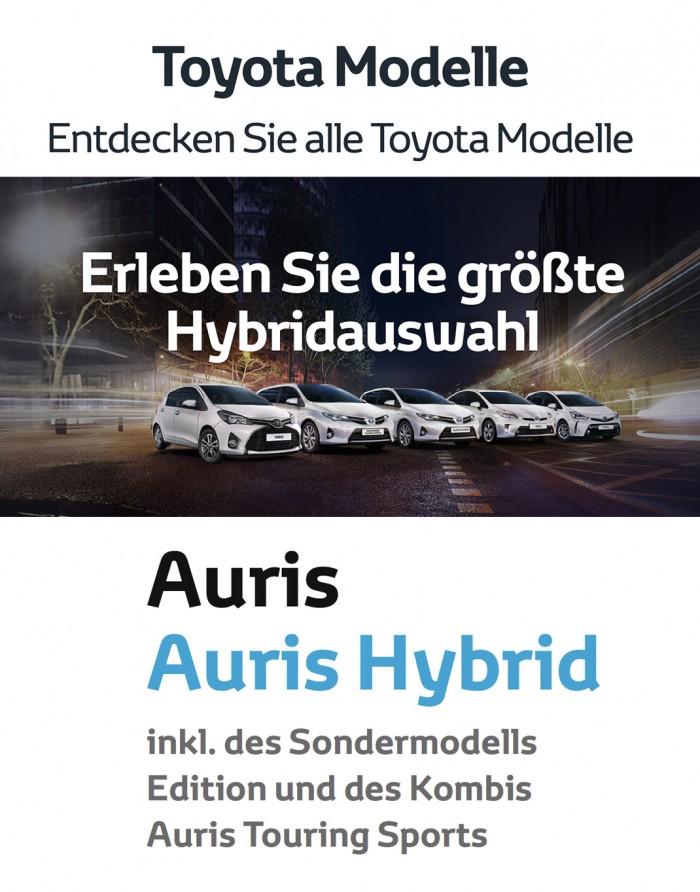 Hausschrift Toyota Display bold