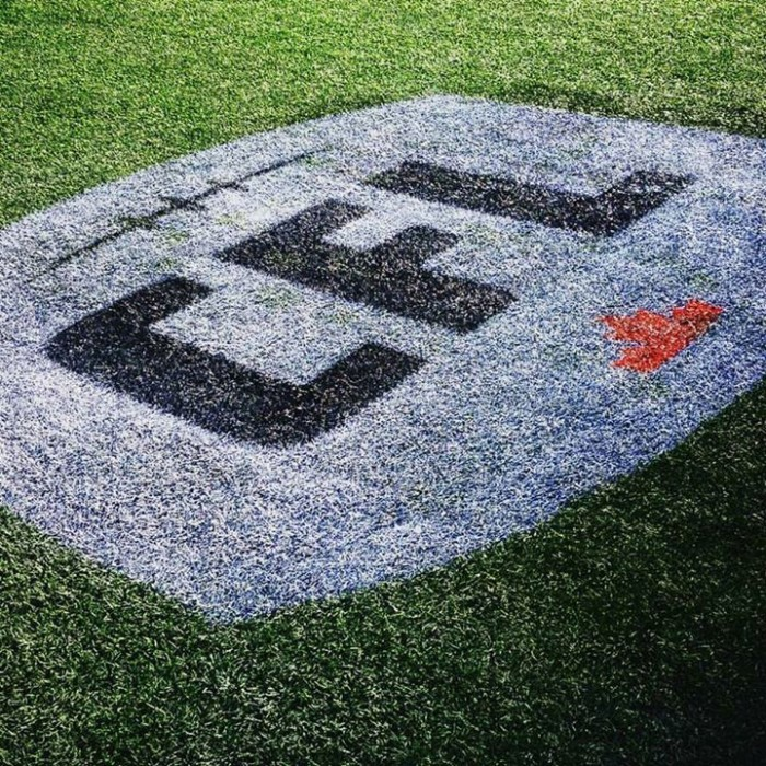GreyCup 2015 endzone