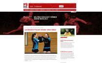 DFBL Website