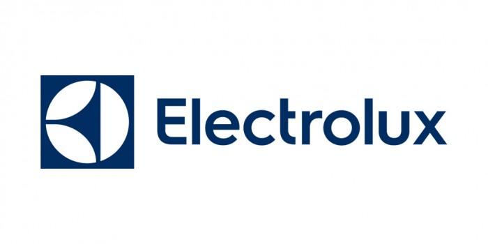 Electrolux Logo (2015)