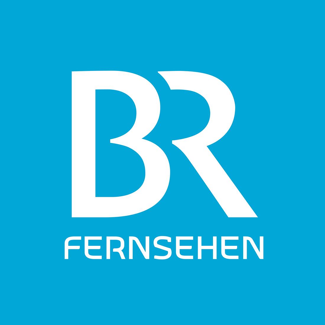 Bildergebnis für logo br