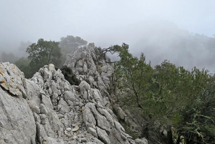 in den Wolken, Coll de sa Basseta