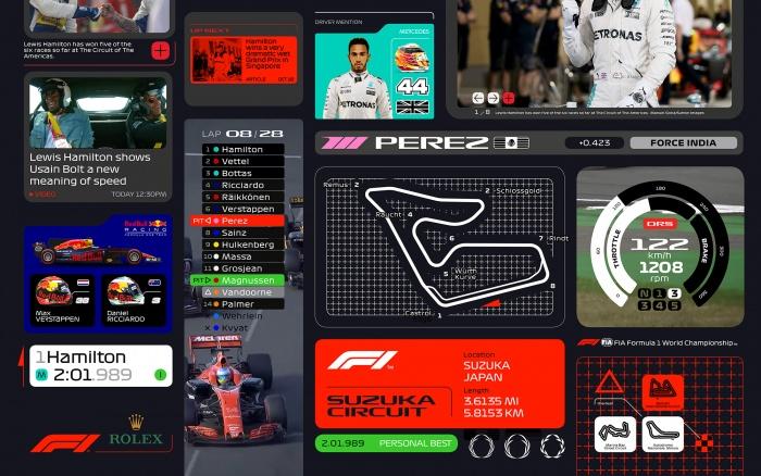 F1 Visual Identity