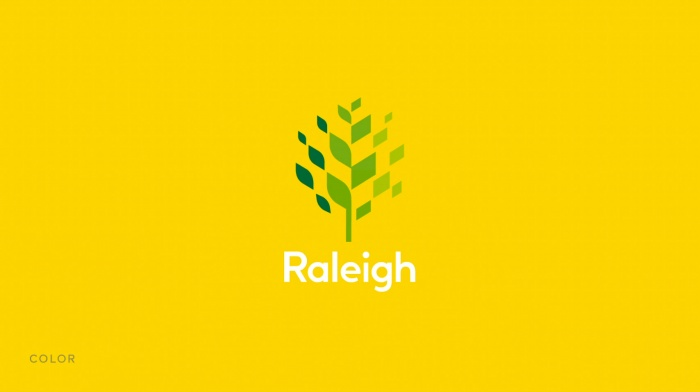 Raleigh Logo Color