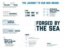 NAVY Brand Infographic