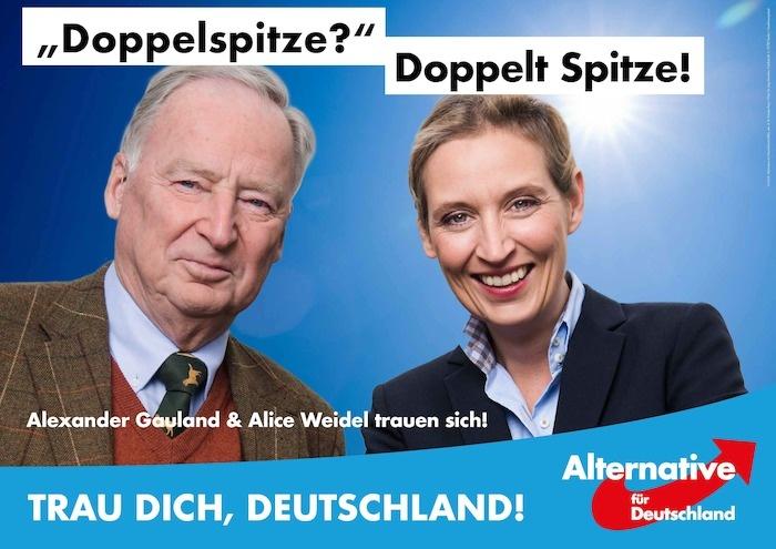 Bundestagswahl 2017 Plakat AfD, Doppelspitze