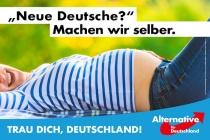 Bundestagswahl 2017 Plakat AfD, Neue Deutsche