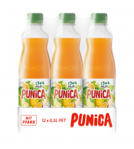 Punica Multivitamin PET 12 x 500ml, Quelle: PepsiCo Deutschland