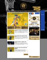 Basketball Löwen Braunschweig – Website