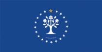 Mississippi State Flag – Entwurf 5, Quelle: Ballotpedia