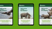 San Diego Zoo Branding – Digital Media