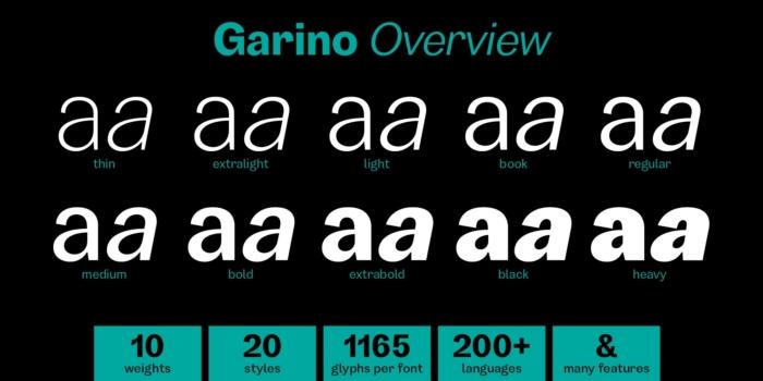 GARINO Overview
