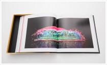 bff-jahrbuch-2012-7