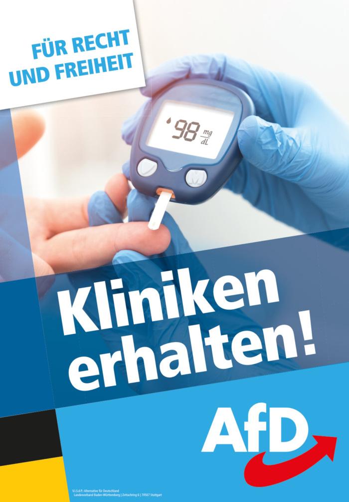 Landtagswahl Baden-Württemberg 2021 AfD - Plakat - Design ...
